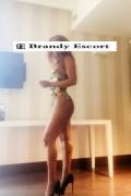 Brandy - Sensual, Lovely, High Class Escort